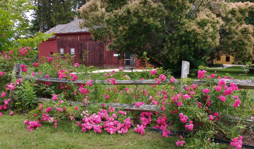 The grounds at Arrowhead and the nature trails behind the barn are open year-round sunrise to sunset for public use.
